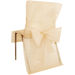 Chaircovers, champagne 50 x 95 cm 10 stk.-20